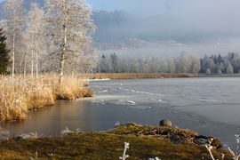 Putterersee - winter 17074 2013-12-23.jpg